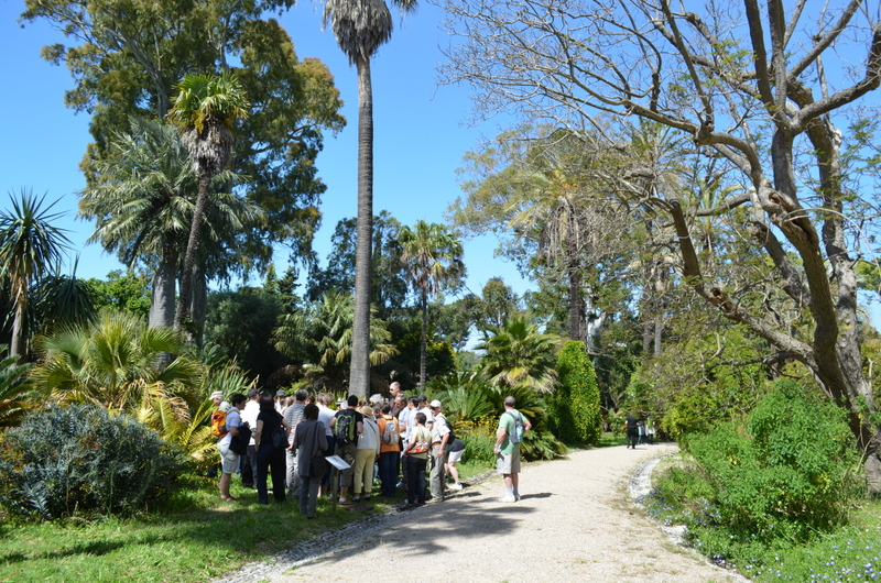 Antibes juan les pins tourisme antibes juan les pins for Jardin thuret 06160 juan les pins