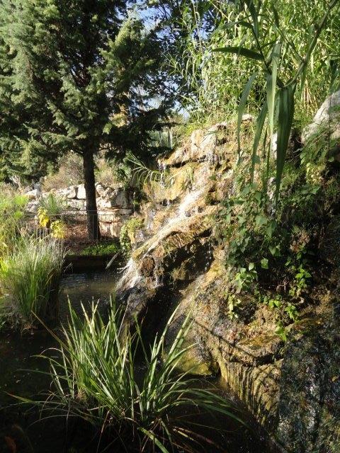 Jardin botanique de nice nice tourisme nice for Jardin botanique nice