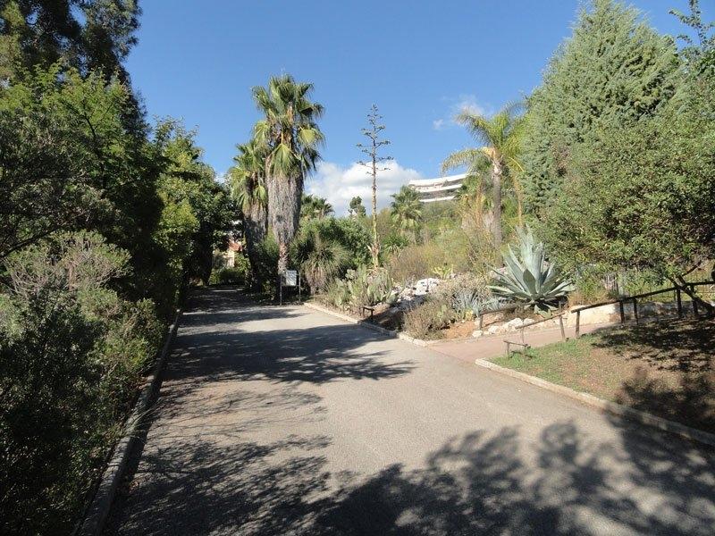 Jardin botanique de nice nice tourisme nice for Jardin wilson nice