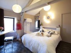 Les Fleurines Hôtel et Apparthôtel Villefranche-de-Rouergue