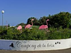 Photo du camping Camping de la Brise à Saintes-Maries-de-la-Mer