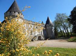 Chambres d'Hôtes Chateau de la Borie Saulnier