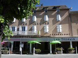 Hôtel Les Tilleuls de Pareloup Salles-Curan