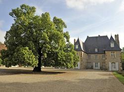 Hotel Château du Riau Villeneuve-sur-Allier