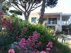 Studios Villa Coeur sur Mer La Croix-Valmer