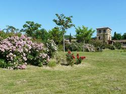 Holiday Home Les Ecuries Limoux Limoux