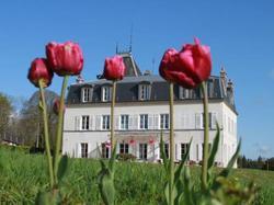 Chateau Saint Gervais Asnieres I