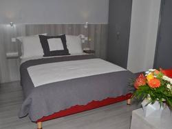 Hortencia Hôtel du Cheval Blanc Saint-Maixent-l\'Ecole