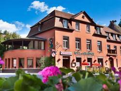 Hotel Hotel De Gerardmer Soultzeren