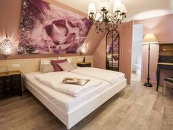 Hôtel Aux Trois Roses STRASBOURG