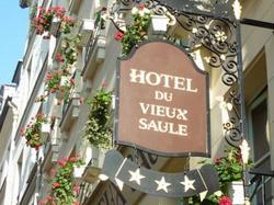 Hôtel Du Vieux Saule : Hotel Paris 3