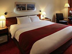 Mercure Lyon Centre Saxe Lafayette Hotel LYON