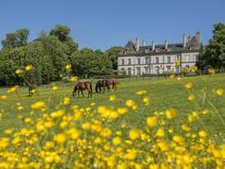 Château d'Ygrande - Châteaux et Hôtels Collection - Hotel